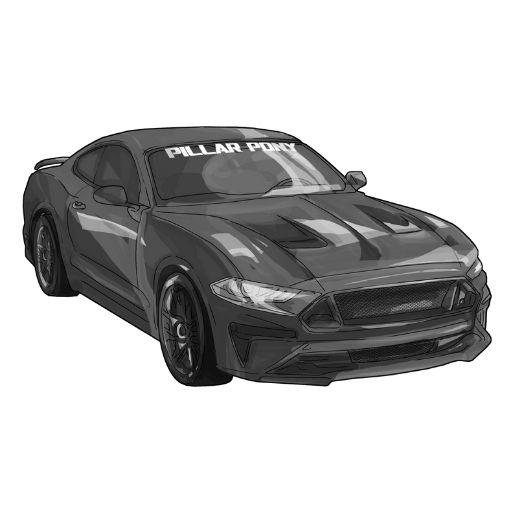 The Pillar Pony a 2019 Mustang GT