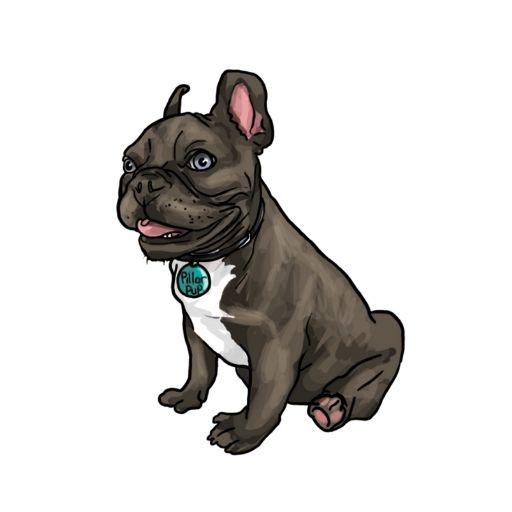 The Pillar Pup, Frankie